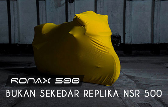ronax gmbh 500